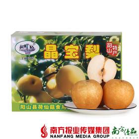 【全国包邮】 晶宝梨 10斤±2两/箱  (72小时之内发货)