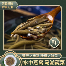 马湖莼菜一级四川大凉山特产蔬菜 非太湖莼菜西湖嫩芽马蹄菜野菜