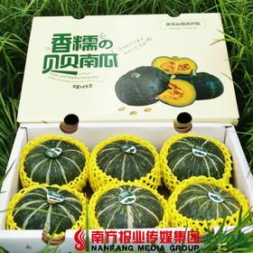 【全国包邮】那园子贝贝南瓜礼盒装 4.2斤-4.5斤/箱(5-6个)  (72小时之内发货)