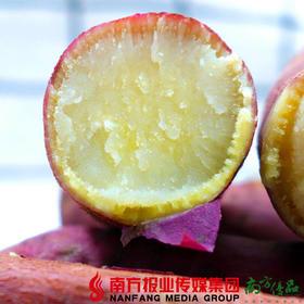 【全国包邮】陕西板栗红薯  (72小时之内发货)