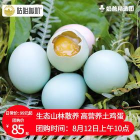 【咕唂呱叽】山林散养土鸡蛋30枚/50枚/60枚