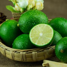 【应季上新】重庆青柠檬 青柠檬新鲜现采摘 淡香浓郁 酸爽可口 皮色青绿 清香味浓