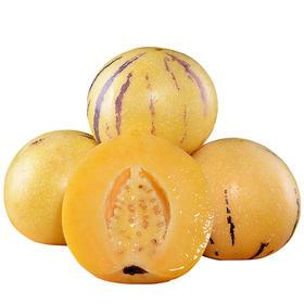 云南石林人参果 (圆果) 5斤|清甜多汁 肉质细嫩 皮薄肉厚【应季蔬果】