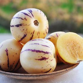 精选 | 清甜爆汁的云南人参果 低糖低脂肪 有机种植 产地现摘新鲜直达 5斤装