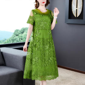 NYL079202新款时尚优雅气质蕾丝刺绣中长款连衣裙TZF