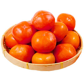 【陕西】大荔火晶柿子软柿子爆甜 皮薄似纸 果肉蜜甜 入口细腻