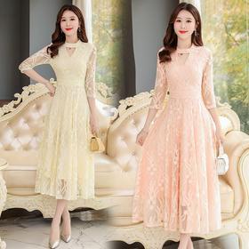 NYL098034新款潮流时尚气质修身显瘦百搭中长款蕾丝连衣裙TZF