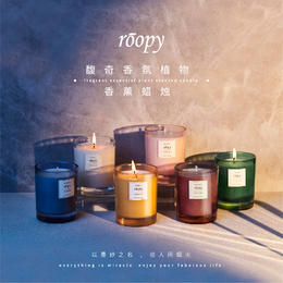 Roopy润培植物香薰蜡烛家用室内无烟持久生日仪式暮色人间苍兰ins