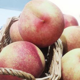 【脆甜】北京大桃  新鲜水果 桃子 蜜桃 5斤装 包邮