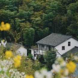 【湖州•莫干山】西坡度假酒店  自由行超值套餐!