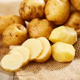 紫阳 富硒土豆 5斤装|粉糯香甜 皮薄肉厚【应季蔬果】