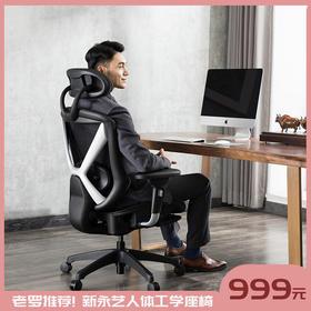 顺丰包邮【新品上市 老罗推荐同款】 新永艺人体工学座椅  靠背坐垫全特网设计更透气