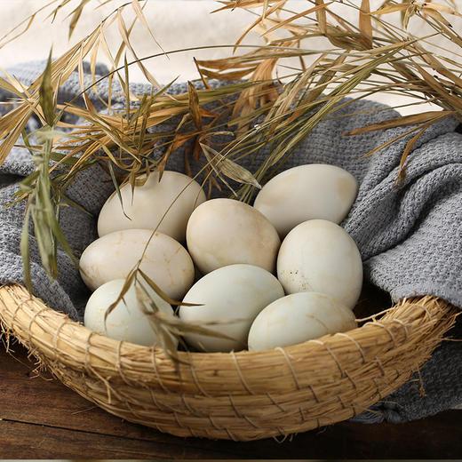 【广西 • 北海 海鸭蛋】 蛋白细嫩 爆油流沙 咸淡适宜  真空包装 浓香蛋黄爆满 好吃不腻口 商品图1