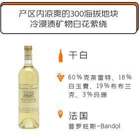 2018年丹派酒庄邦多尔干白葡萄酒 Domaine Tempier Bandol Blanc 2018