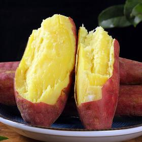 陕西板栗红薯5斤装|沙土种植 肉多少丝 当季新鲜【应季蔬果】