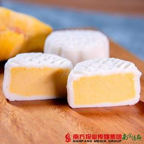 【广东省包邮】马来猫山榴莲冰皮月饼 360g/盒 (72小时之内发货)