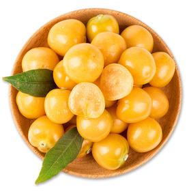 姑娘果 新鲜菇娘果 11.5元/斤 精装300g 当季水果黄灯笼果特产-864851