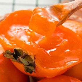优选新品 | 陕西火晶柿子 甜如蜜汁 皮薄无核 新鲜采摘 现摘现发 带箱5斤装