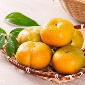果肉嫩滑爽口云南脆甜柿子 香甜可口 汁多味美 果肉鲜美  3斤,5斤,9斤包邮