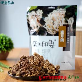 【全国包邮】栾川印象 鹿茸菌200g/包 (72小时内发货)