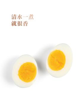 丹江口初生蛋30枚礼盒装