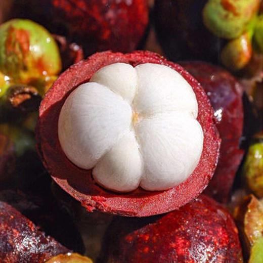 泰国山竹  装新鲜当季水果特产 商品图2