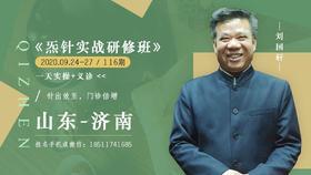 刘国轩老师炁针实战班——疼痛的三维疗法!