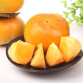 【助农增收】山西巧克力柿子 脆甜柿子  甜脆味美  饱满圆润 5斤果园直发