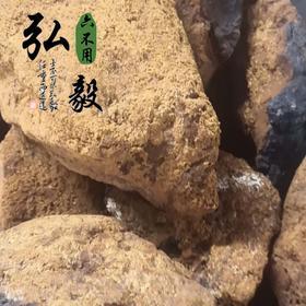 【弘毅六不用生态农场】六不用 野生桦树茸 俄罗斯进口 250克/份