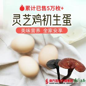 【广州包邮】灵芝鸡蛋 30枚/盒(72小时内发货)