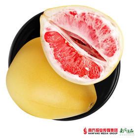 【珠三角包邮】原鲜汇 红肉蜜柚 1.5-2.2斤/个  3个/份(9月10日到货)