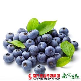 【珠三角包邮】农乐秘鲁蓝莓 约125g/盒 3盒/份(9月30日到货)