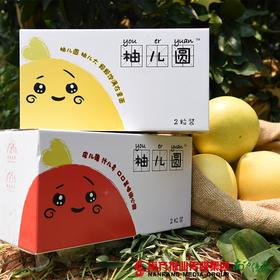 【全国包邮】庄怡果业 柚儿圆(红柚)2粒装  4.8-5.2斤/箱(72小时内发货)