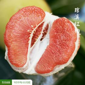 [琯溪蜜柚礼盒装]柔嫩饱满 果香四溢 三种蜜柚  2粒/4粒可选