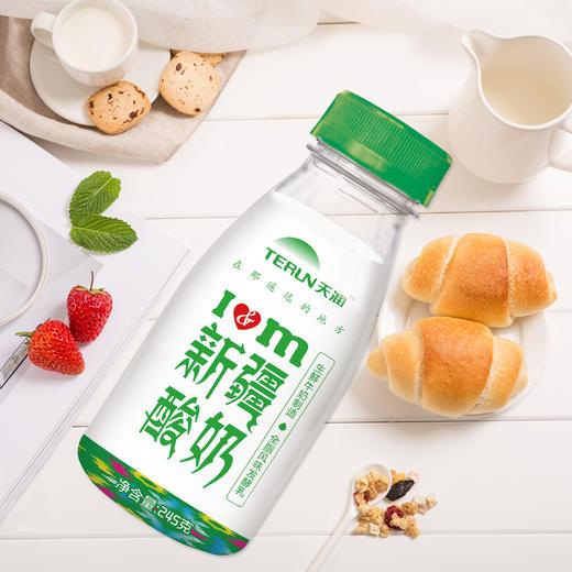 预售[天润新疆酸奶 下单后10天内发货]全脂风味发酵乳 245g*8瓶 商品图0