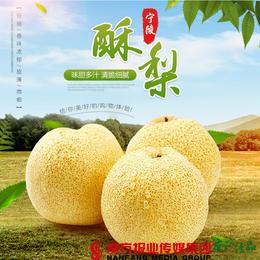 【全国包邮】宁陵酥梨(礼盒装)(5-7枚) 4.7-5斤/箱(72小时内发货)
