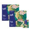 Tempo得宝V&A博物馆联名绿野骑士款手帕纸4层24小包 纸巾小包便携装餐巾纸 商品缩略图1