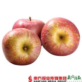 【珠三角包邮】云南野生丑苹果(含箱毛重) 7斤±3两/箱(9月21日到货)