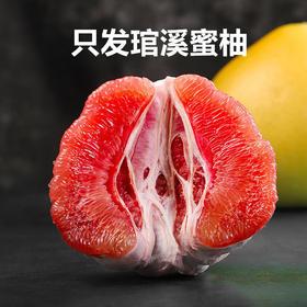 【福建 • 正宗琯溪蜜柚】时令精品大果,肉厚多汁,酸甜脆爽,色泽鲜艳,果粒层次丰富,不打蜡绿色无添加!