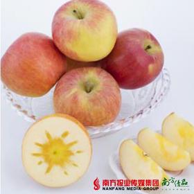【珠三角包邮】原鲜汇 昭通丑苹果70-75#礼盒装 6.5-7.5斤/箱(9月28日到货)