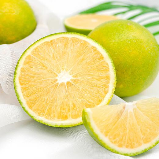 云南冰糖橙 满满维C 酸甜爽口 高海拔不打药原生态橙子  3斤装/5斤装/9斤装 商品图1