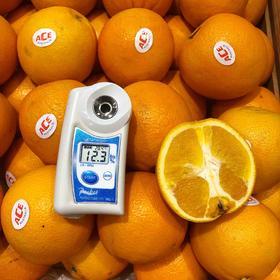 澳洲甜橙 | 甜度不错,水分很足,橙子味很浓,回味只带一滴滴酸