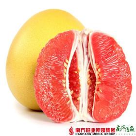【全国包邮】柚见佳人 三红蜜柚大果 3-4个装精品礼盒 8-9斤/箱(72小时内发货)