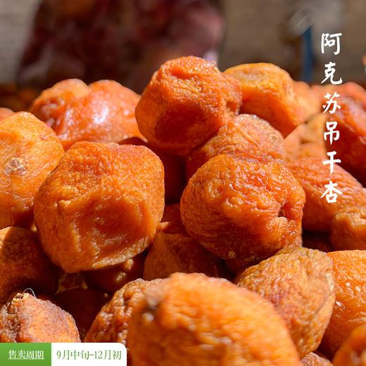 [阿克苏吊干杏]甜而不腻 滋味醇厚  500g/包 商品图0