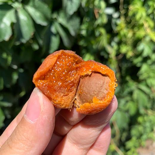 [阿克苏吊干杏]甜而不腻 滋味醇厚  500g/包 商品图2