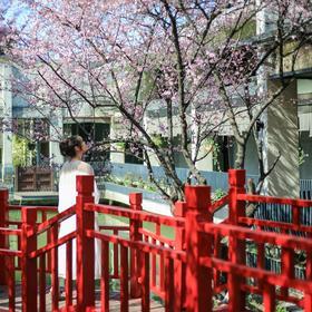【杭州•余杭】杭州水墨蓉庄艺术主题酒店   2天1夜自由行套餐