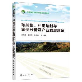 碳捕集、利用与封存案例分析及产业发展建议