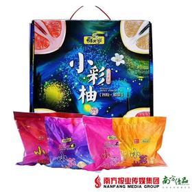 【珠三角包邮】福建4色小彩柚 净果7.5斤±150g/箱 4粒装(9月21日到货)