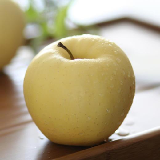 金帅苹果 香甜多汁 芳香怡人 一口下去都是爱 5斤装 商品图6
