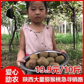 【8.8元/箱】陕西猕猴桃集中上市,这是65岁聋哑老人孤身求援,肯请转发助力......